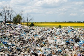 Solving the Landfill Problem with Resource Recovery Facilities By Zachary Shahan Leave a Comment, cleantechnica.com In a recent arti­cle writ­ten by Ash­ley Hal­li­gan on Soft­ware Advice, Hal­li­gan inter­viewed experts head­ing up two pow­er­ful sym­bi­ot­ic rela­tion­ships between resource recov­ery cen­ters. Given that Amer­i­cans, in 2010 alone, gen­er­at­…