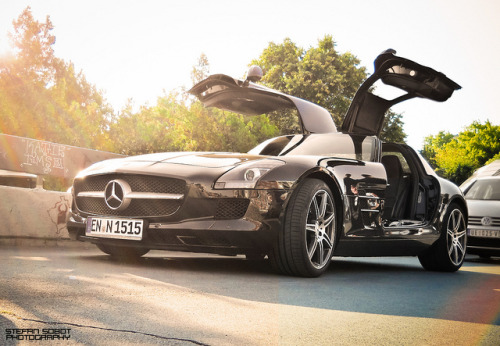 motorsport-photography:  Gullwing. by Stefan Sobot on Flickr.