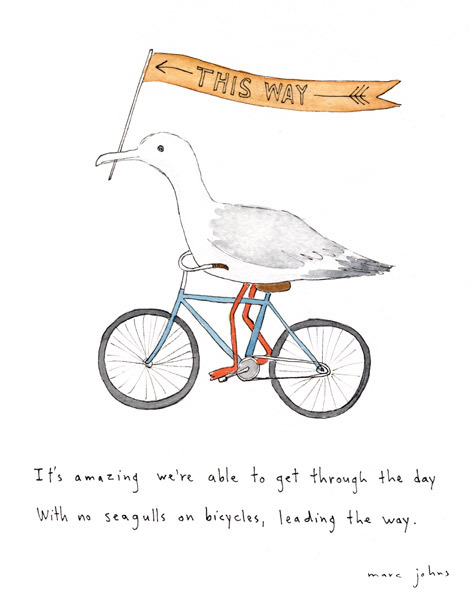 nevver:  Seagulls on bicycles, leading the way