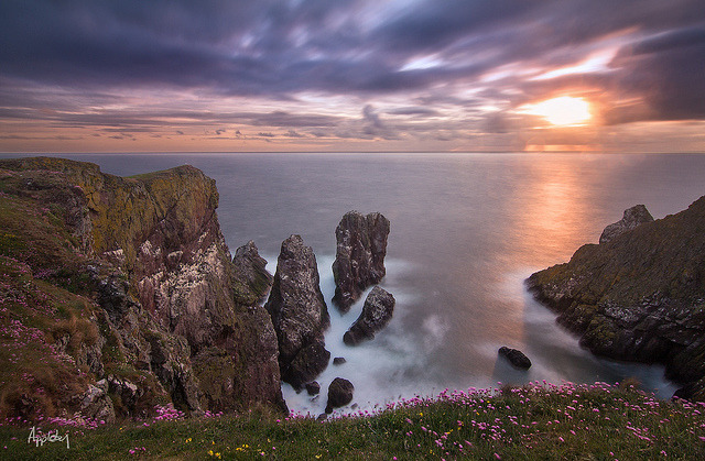 St Abbs Head cliff by jimmyosram1 on Flickr.