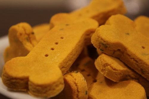 WHEAT-FREE PUMPKIN DOG BISCUITS