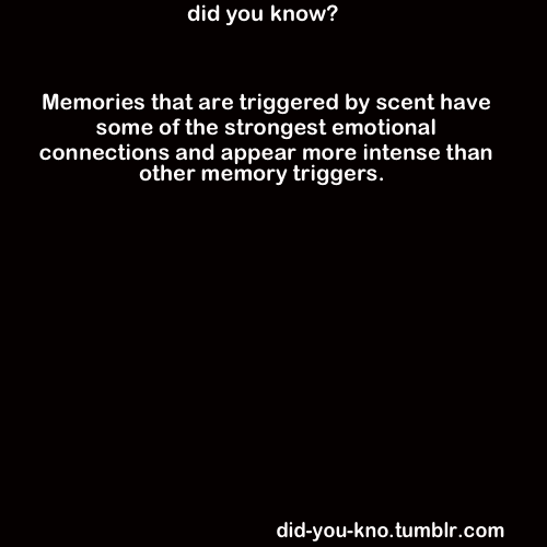 did-you-kno:  Source: MacDonald, Matthew. 2008. Your Brain: The Missing Manual.