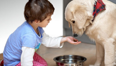 mothernaturenetwork:  How pets can improve autistic children's social skillsResearchers theorize that pets help autistic children by promoting interactions between family members and developing behavioral cues.