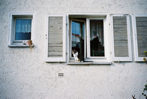 citiesinflames:  untitled by Joana Salta on Flickr.