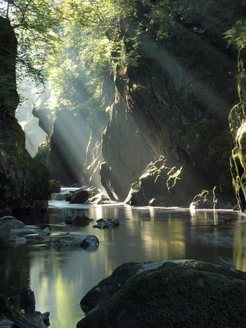 opticoverload:  Fairy Glen