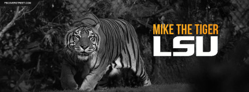 Mike The Tiger Facebook Covers