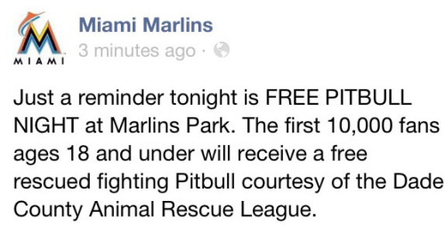 So, someone hacked the Marlins' Facebook page — oh, and six other MLB pages. And the hacker apparently has a major sense of humor. Must read.