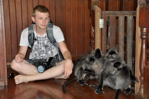 panserbjorne:  What's that? Oh me and some monkeys who played with me.