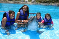 4 kids and a dolphin~ http://livelifehappyandsimple.tumblr.com/
