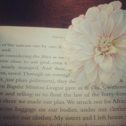 Today I got a chance to do some reading! :) (Taken with Instagram)