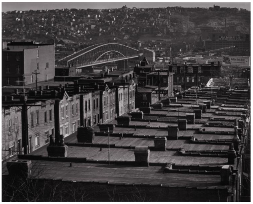 Flat Roof Tops, Pittsburg, 1951 Russell Lee