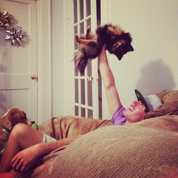 Lionkinging the puppies  (Taken with Instagram)