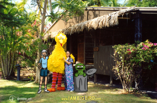 Childhood Idols no. 5 - Family Portrait (Carroll, Big Bird, Deb (Carroll's wife) & Oscar  I AM BIG BIRD week concludes today! The story of how Carroll met his wife, Deb is an amazing one as well - a whirlwind romance that has lasted ever since their first meeting.Whether we know him as Oscar the Grouch or Big Bird, if you watched Sesame Street, Carroll has undoubtedly touched you in some way - luckily he documented everything from his point of view and this is our chance to get a glimpse of that. Here's the kickstarter that can make it all possible!  Hope you enjoyed I AM BIG BIRD week!