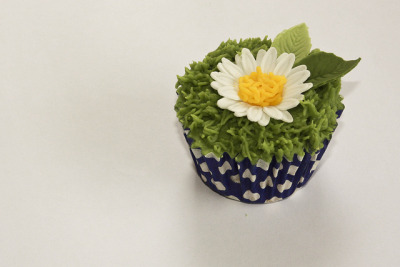 Daisy and grass cupcake by Liz Simmons on Flickr.