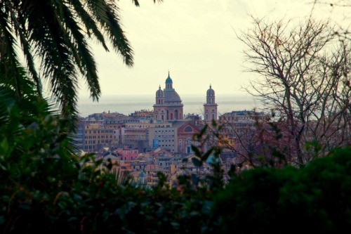 Tripify.com featured a picture of mine representing Genoa in the article Where to Find Romance in Italy by Josh Lew  picture by Goldmund100