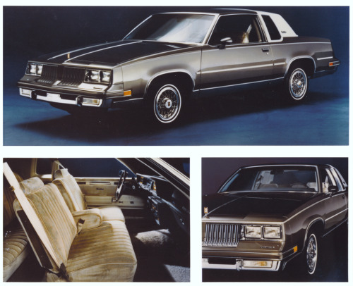 slimlion:  1984 Oldsmobile Cutlass Supreme