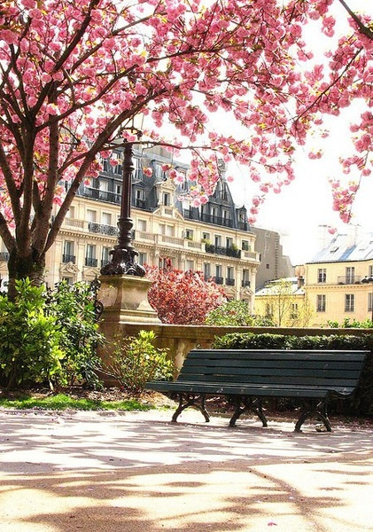 a perfect Spring day in Paris