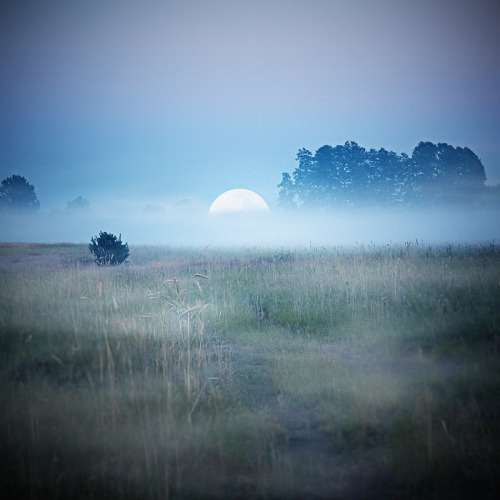 Moonrise by =NGorska