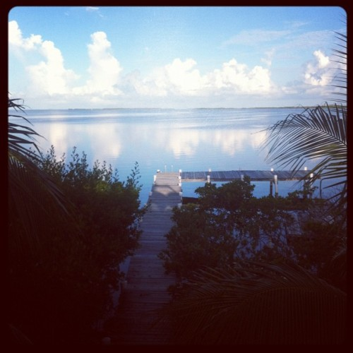 Good morning from #keylargo (Taken with Instagram)