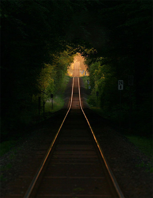 Railroad Tree Tunnel, France photo via xtc