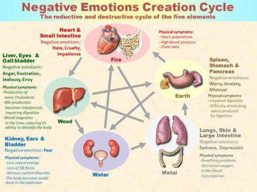 albfit:  Stay away from the Negative Emotions Cycle… Keep it Positive & Healthy..