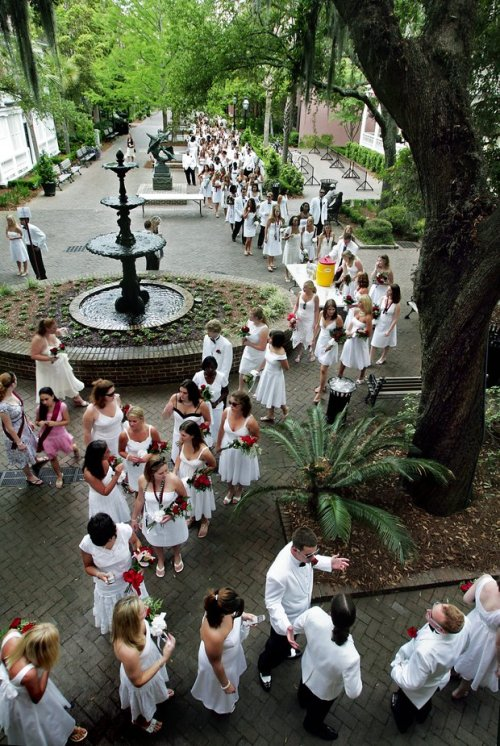 happyhaps:  fycharleston:  Graduation ceremonyCollege of Charleston campus  I personally believe we have the most beautiful commencement ceremony of all undergraduate schools.