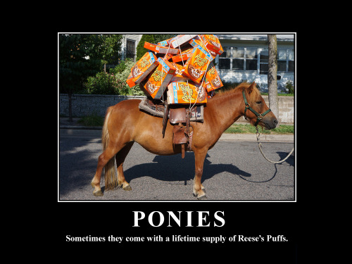The people have demanded a pony with access to a lifetime supply of Reese's Puffs. And so it is.