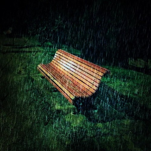 #alone #sad #rain #garden #parkbench #bestoftheday #picoftheday #photooftheday #photo #pic #picture #statigram #instagram #webstagram #tagstagram #travelingram  #ig #igers #ignation #iphonephotos #iphonesia #eavig #places #fromwhere #street #streetphotography  (Taken with Instagram)