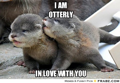 Meme - I Am Otterly in Love with You - Otters.