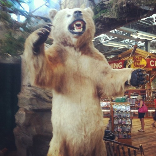 Did is my friend Yogi from the Bass Pro Shops. (Taken with Instagram)