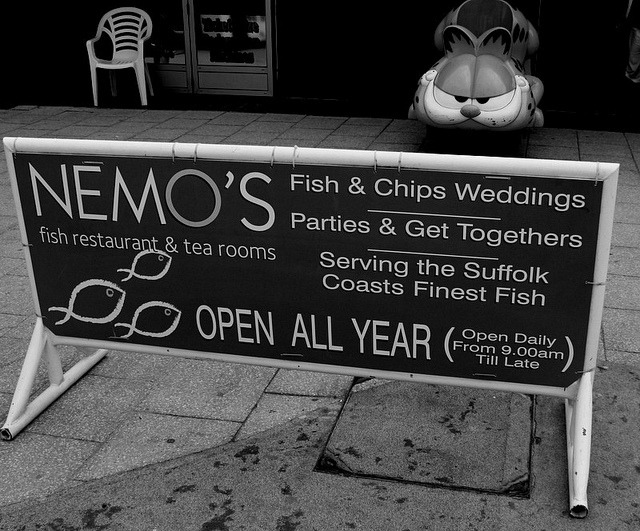 IMG_7668 on Flickr.Fish and Chip Weddings