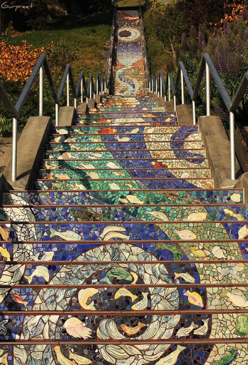 ybb55:  The 16th Avenue Tiled Steps in San Francisco