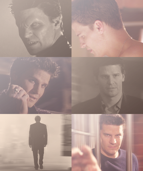 "trustingdesires:  A-Z of favourite characters → Angel(us)  ""Passion. It lies in all of us. Sleeping, waiting, and though unwanted, unbidden, it will stir. Open it's jaws, and howl."""