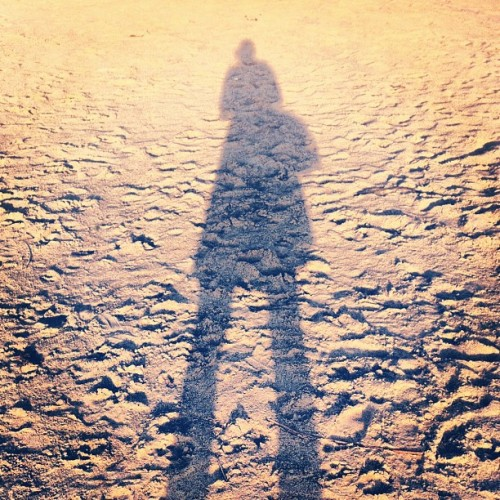 momma long legs #sunset #shadow #wisconsin #iphoneonly  (Taken with Instagram at The Wisconsin River)