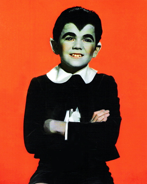 Butch Patrick as Eddie Munster (1960's)