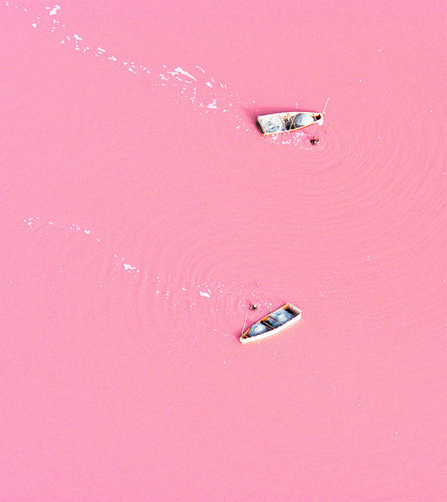 Pink paradise. Lake Retba, Senegal. Learn more here if you're so inclined.
