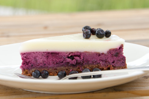 diet-killers:  Bilberry cheesecake / Blueberry cheesecake / Mustika-toorjuustukook (от Pille - Nami-nami)