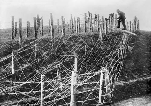 Yards and yards—possibly miles depending on the sector—of barbed wire barricade being constructed on the Western Front.