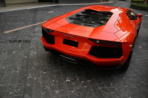 fullthrottleauto:  Lamborghini Aventador LP700-4 (by xuanrenpictures)  Here's your Car Porn of the Day: 2012 Lamborghini Aventador LP700-4. I love that colour. Not like. Love.