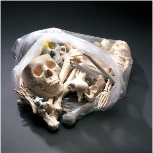 Anatomical Chart Co. Bags of Bones Item #: BONES1 $44.44
