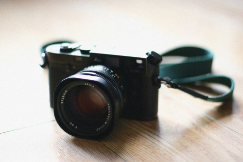 Leica M6 Noctilux 50mm f1.0 (by Garlap)