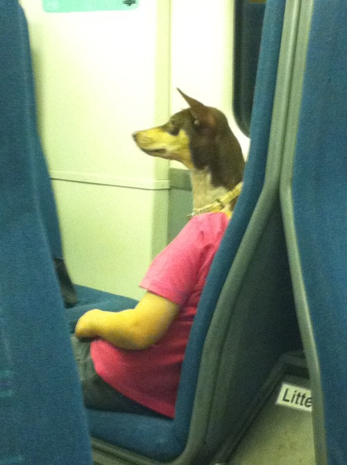 animalsthatdopeoplethings:  Woof!
