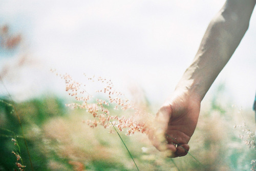 gildings:  untitled by 賴樂高 on Flickr.