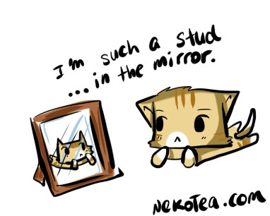 For more cat adventures, follow nekotea. ヾ(´^ω^)ノ♪