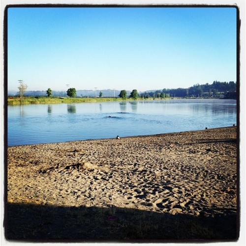 Beautiful morning for a swim at Lake Tye.  (Taken with Instagram)