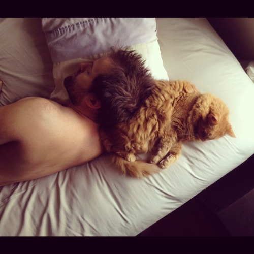 cuteboyswithcats:  every morning. steve and tickles. [brooklyn, ny] -jenny