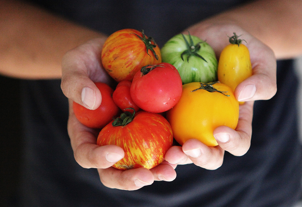 heirloom tomatoes (by tres.jolie)