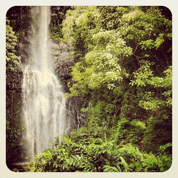 #ermahmauri #maui #hawaii #waterfall (Taken with Instagram)