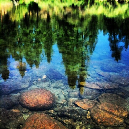 Reflections #nature #outdoors #hiking #river  (Taken with Instagram)