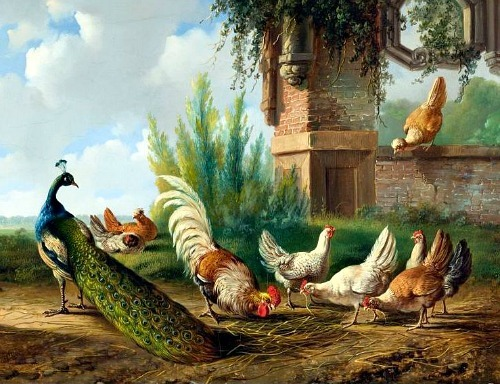 Albertus Verhoesen Peacock, Rooster and Chickens in a Garden 1863